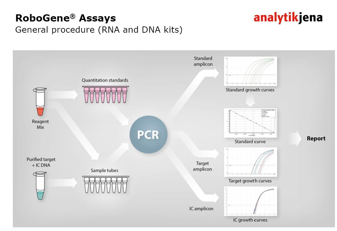 robogene assay 2